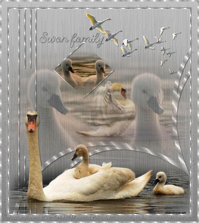 https://designpsp.nl/Materialen/Yvonne/Pagina6/211%20swan%20family/swan.jpg